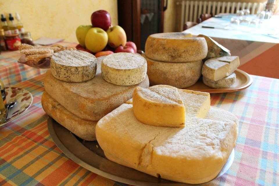 formaggi