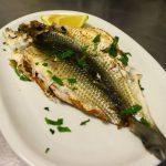 pesce (1)